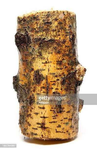 wood - log stock pictures, royalty-free photos & images