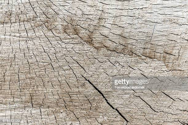 wood - nahaufnahme stock pictures, royalty-free photos & images
