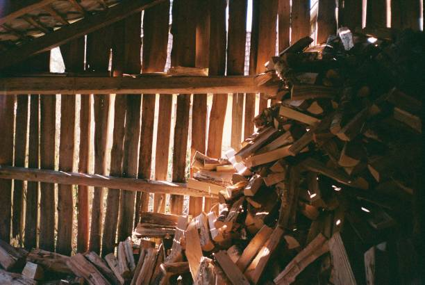 Wood pile lit from behind