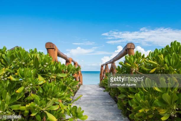 wood pontoon on the beach in front of the sea - isla holbox fotografías e imágenes de stock