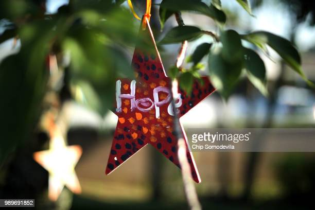 Wood stars decorated by children with messages of hope hang in a tree above a makeshift memorial outside the Annapolis Capitol Gazette offices for...