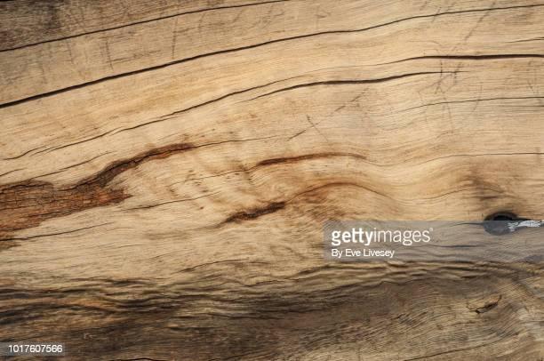 wood texture - crèmekleurig stockfoto's en -beelden