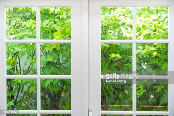 wood window frame with green leaves background - window frame stock pictures, royalty-free photos & images