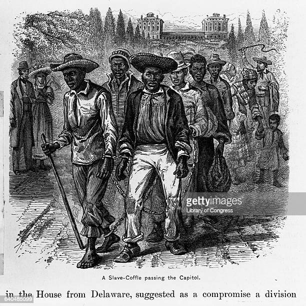 A woodblock print done in 1880 depicts a line of slaves chained together passing the United States Capitol caucasian onlookers and the waving whip of...