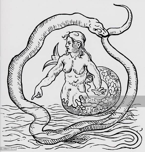 Woodcut depicting a mermaid encircled by a snake Undated illustration