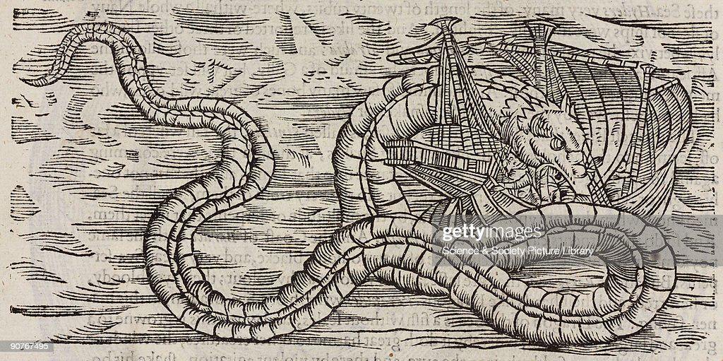 Woodcut of a sea-serpent believed to be 120 feet long