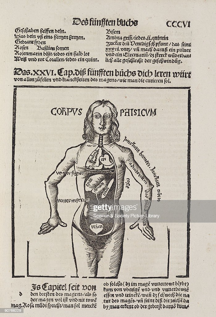 Woodcut Of An Anatomical Female Figure With Internal Organs Exposed