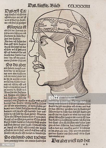 Woodcut which resembles and is probably derived from one in �Philosophia Naturalis� by Albertus Magnus Illustration from �Liber de arte Distillandi...