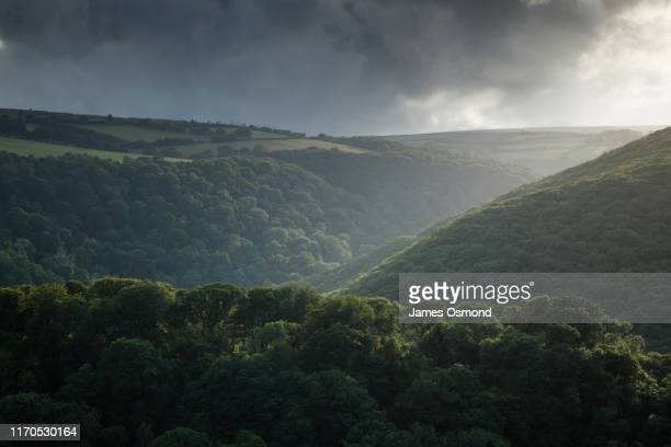 wooded valley with agricultural fields above. - valley stock pictures, royalty-free photos & images