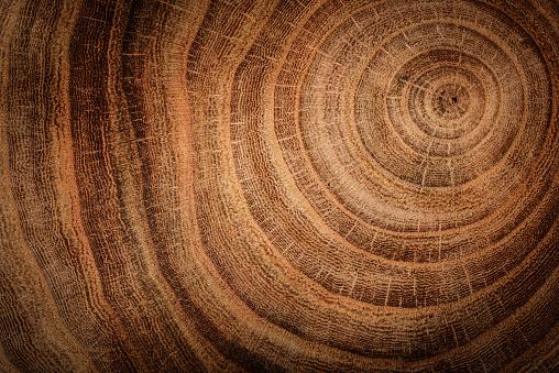 wooden background 529409672