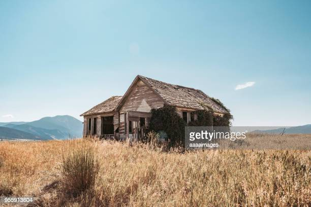 wooden barn on grass against sky - abandoned stock pictures, royalty-free photos & images