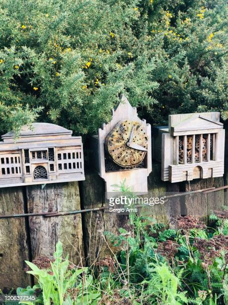 wooden bee and insect houses shaped as london landmarks - sergio amiti stock pictures, royalty-free photos & images