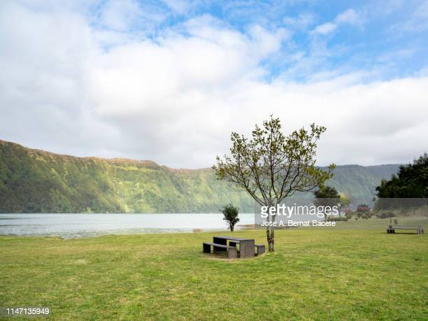 wooden bench and table of picnic at a public nature park next to the shore of a lake. - riva del lago foto e immagini stock