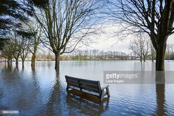 Wooden bench on a flooded sports ground.