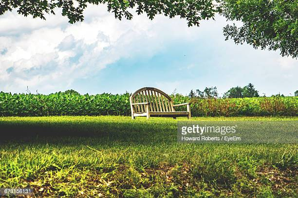 wooden bench on grassy field at park - montgomery county pennsylvania stock pictures, royalty-free photos & images