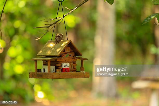 Wooden Bird Feeder Hanging From Tree