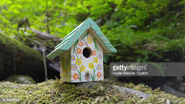 Wooden Birdhouse On Rock At Forest
