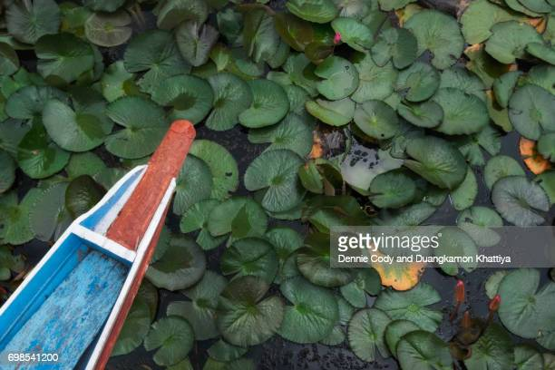 Wooden boat in water lily pond at Thale Noi Waterfowl Reserve in Patthalung Province southern Thailand