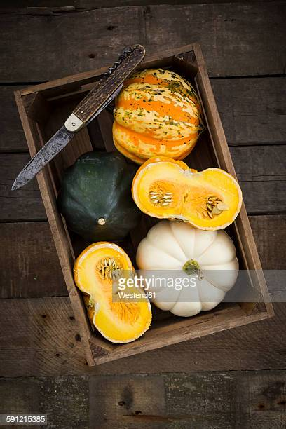 Wooden box of different sorts of mini squashes on wood