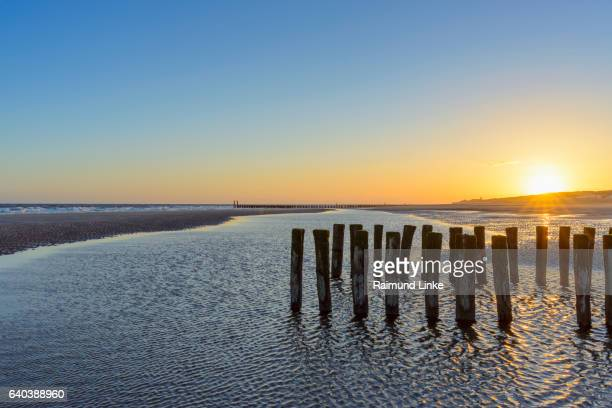 Wooden breakwater on beach with prille at low tide, Sunrise, Domburg, North Sea, Zeeland, Netherlands
