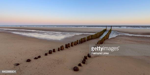 Wooden breakwater on sandy beach at low tide, Domburg, North Sea, Zeeland, Netherlands