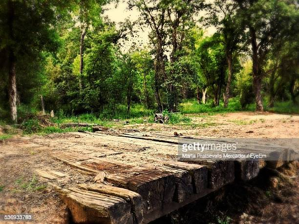 Wooden Bridge Against Trees In Forest