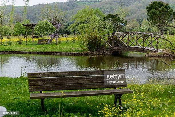 Wooden Bridge and bench