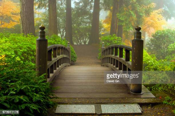 wooden bridge at portland japanese garden in autumn, portland, oregon, usa - japanese garden stock photos and pictures