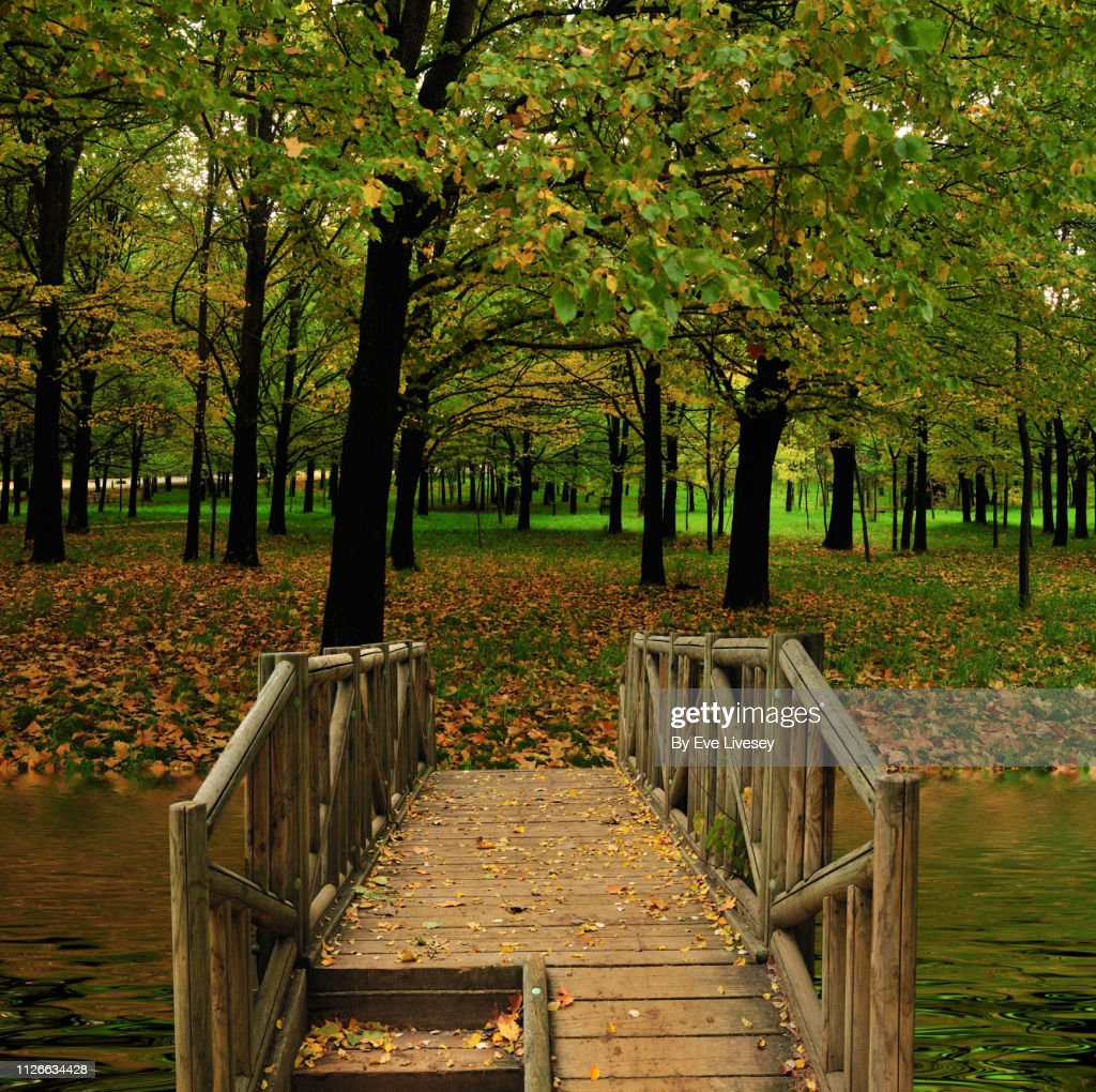 Wooden Bridge Over A River Background High Res Stock Photo