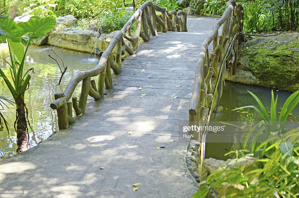 wooden bridge : Bildbanksbilder