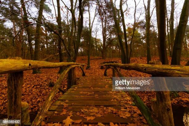 wooden bridge - william mevissen ストックフォトと画像