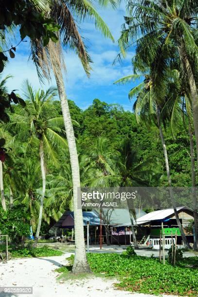 wooden bungalows among palm trees Pulau Weh Banda Aceh Sumatra Indonesia