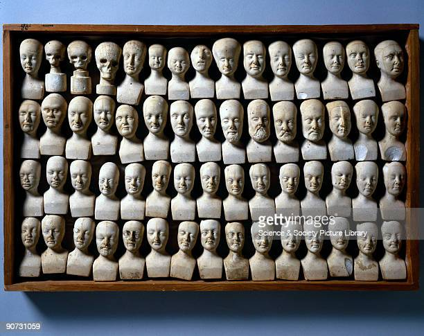 Wooden case containing sixty small phrenological heads made by the phrenologist William Bally of Dublin Ireland to illustrate the theories of...