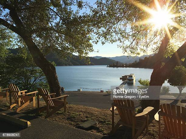 Wooden Chairs By Trees Against Lake On Sunny Day