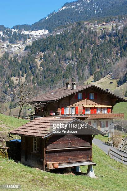 Wooden chalet and barn.