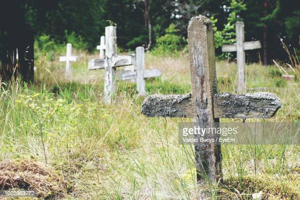 60 Top Wooden Crosses For Graves Pictures Photos And Images Getty