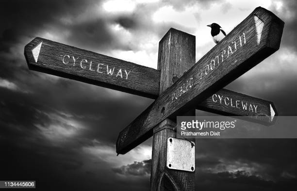 wooden direction signboard - road sign board stock pictures, royalty-free photos & images