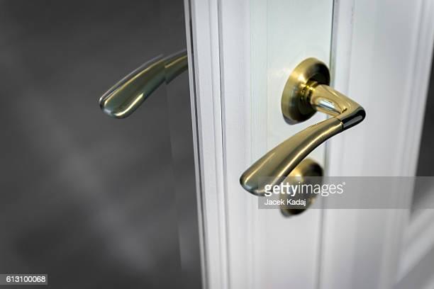 Wooden door with golden metal handle