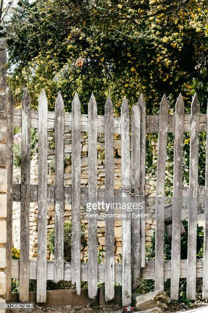 Wooden Fence Against Trees
