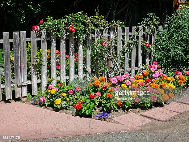 Wooden Fence and Flowers