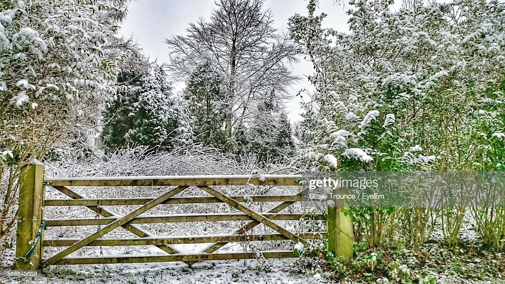Wooden Fence By Snow Covered Trees And Plants Against Sky : Stock Photo