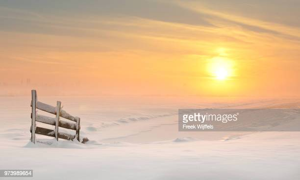 Wooden fence covered with snow at sunset, South Holland, Netherlands