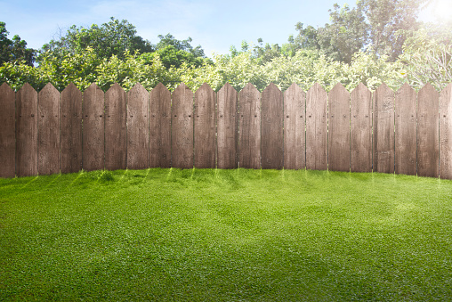 Wooden fence on green garden 931040150