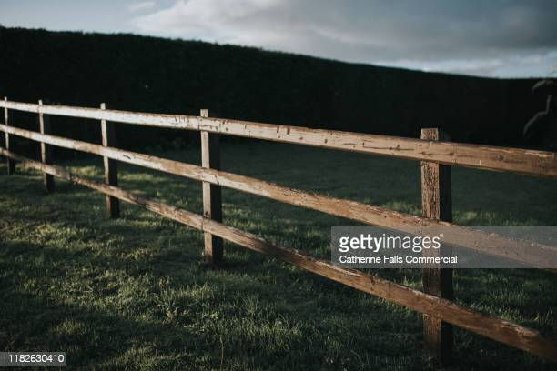 wooden fence - fence stock pictures, royalty-free photos & images