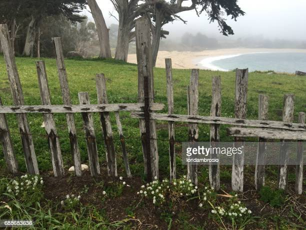 Wooden fence with green grass behind.
