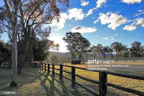 Wooden fence with sunset
