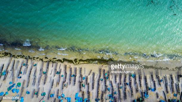 Wooden fisherman boats are seen at the Ifaty beach in Toliara Madagascar on September 3 2017