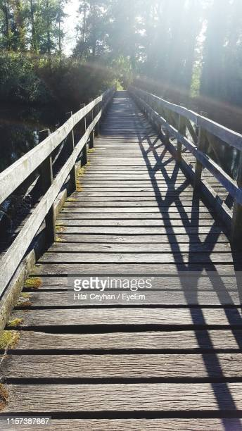 wooden footbridge amidst trees in forest - hilal stock photos and pictures