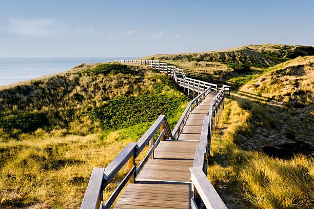 Wooden footbridge over dunes
