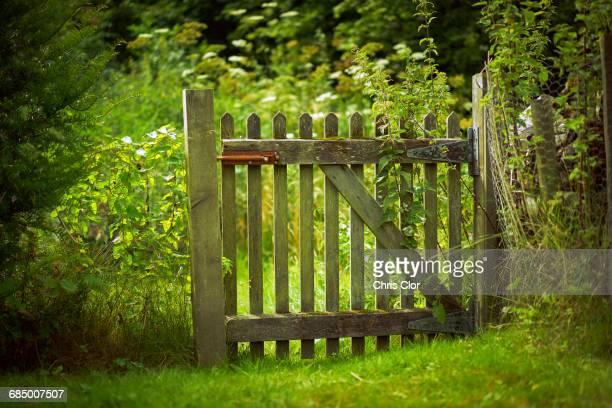 wooden gate green field - cercado com estacas - fotografias e filmes do acervo